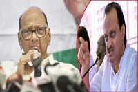 Sharad pawar announces expulsion of nephew from ncp